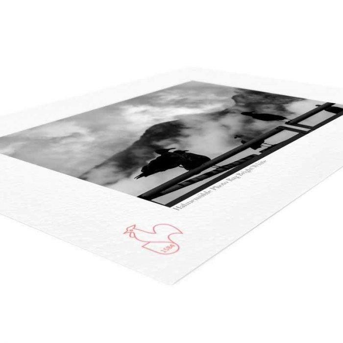 hahnemuhle-photo-rag-bright-white