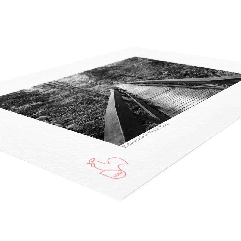 stampa-fine-art-hahnemuhle-photo-rag