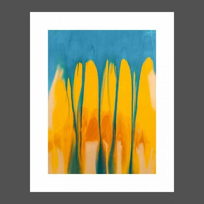 stampa arredo Tulips